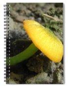 Entoloma Incanum Spiral Notebook