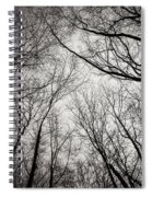 Entwined In The Sky Spiral Notebook