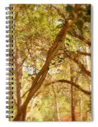 Entwined Spiral Notebook