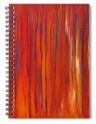 Ephemeral Spiral Notebook