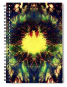 Epiphany Of The Labyrinth Spiral Notebook