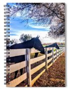Equine Profiles Spiral Notebook