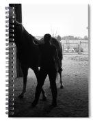 Equus Sapien IIi Spiral Notebook
