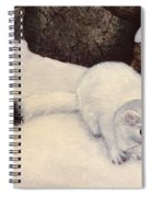 Ermine In Winter Spiral Notebook