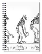 Ernst Haeckel, Evolution Of Man, 1879 Spiral Notebook