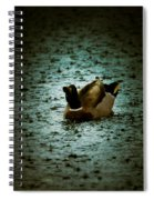 Escaping The Rain Spiral Notebook