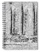 Etching Spiral Notebook