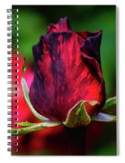 Eternal Love Rose Spiral Notebook