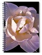 Ethereal 3 Spiral Notebook