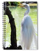 Ethereal Snowy Egret Spiral Notebook