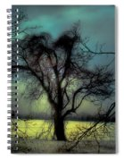 Ethereal Trees Spiral Notebook