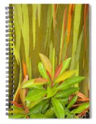 Eucalyptus And Leaves Spiral Notebook