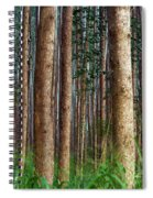 Eucalyptus Forest Spiral Notebook