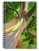 Eucalyptus Tree Spiral Notebook