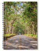 Eucalyptus Tree Tunnel - Kauai Hawaii Spiral Notebook