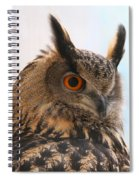 Eurasian Eagle-owl Spiral Notebook