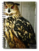 Eurasian Eagle-owl With Oil Painting Effect Spiral Notebook