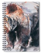 European Brown Bear Spiral Notebook