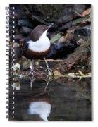 European Dipper Spiral Notebook
