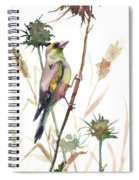 European Goldfinch In The Field Spiral Notebook