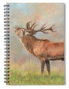 European Red Deer Spiral Notebook