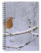 European Robin On Snowy Branch Spiral Notebook