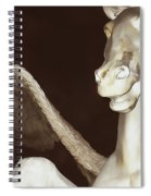 Euros The East Wind Spiral Notebook