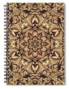 Evanescence Spiral Notebook