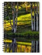 Evening Birches Spiral Notebook