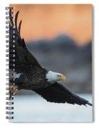 Evening Catch Spiral Notebook