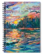 Evening Flight Spiral Notebook