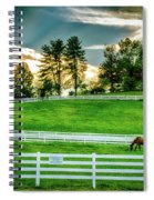 Evening Graze In Tennessee Spiral Notebook