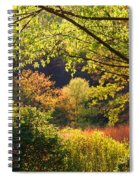 Evening Light 1 Spiral Notebook