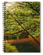 Evening Light 2 Spiral Notebook