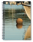Evening Light On Pipit Spiral Notebook