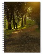 Evening Path Spiral Notebook