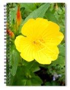 Yellow Sundrop Spiral Notebook