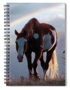 Evening Promise Spiral Notebook