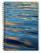 Evening Silk Spiral Notebook