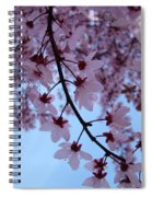 Evening Sky Pink Blossoms Art Prints Canvas Spring Baslee Troutman Spiral Notebook