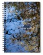 Evergaldes Master Spiral Notebook