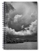Everglades 0257bw Spiral Notebook