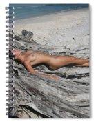 Everglades City Beauty 623 Spiral Notebook