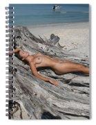 Everglades City Beauty 627 Spiral Notebook