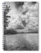 Everglades Lake - 0278abw Spiral Notebook