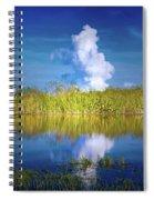 Everglades Smoke Spiral Notebook