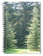 Evergreen Dance Spiral Notebook