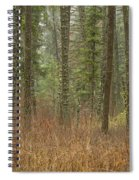 Evergreen Fog Spiral Notebook