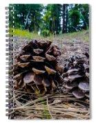 Evergreen Pinecones Spiral Notebook