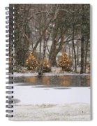 Evergreen Reflection Spiral Notebook